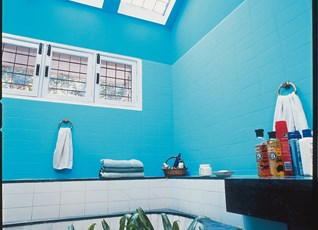 Paradise Bay  Bathroom Wall Colour Design