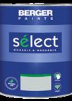 Select Eggshell Silk Finish Emulsion Paint for Interior Walls