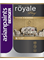 Berger Royale Glitter Metallic Finish Paint for Interior Walls