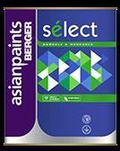 Berger Select Enamel Semi Gloss Finish Paint for Metal